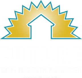 Future Home Inspection Services